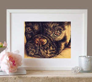 Fine Art Print: Puppy Dog Close Up Drawing