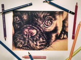 Fine Art Print: Puppy Dog Close Up Drawing, , ArtistrybyLisaMarie