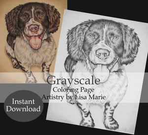 Printable Coloring Page: Spaniel Sitting in Grayscale, , ArtistrybyLisaMarie