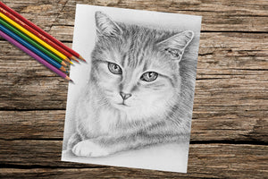 Adult Coloring Pages - Set of Coloring Sheets with Grayscale Cat Art, Set #18, , ArtistrybyLisaMarie