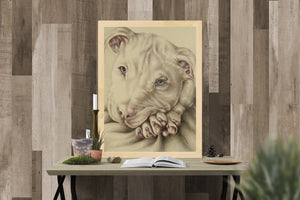 Fine Art Print: Pit Bull Dog Drawing