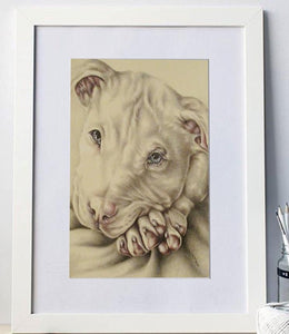Fine Art Print: Pit Bull Dog Drawing, , ArtistrybyLisaMarie