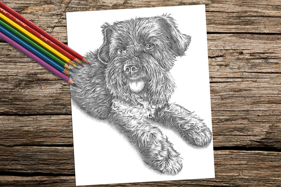 Printable Coloring Page: Terrier Lying Down in Grayscale, , ArtistrybyLisaMarie