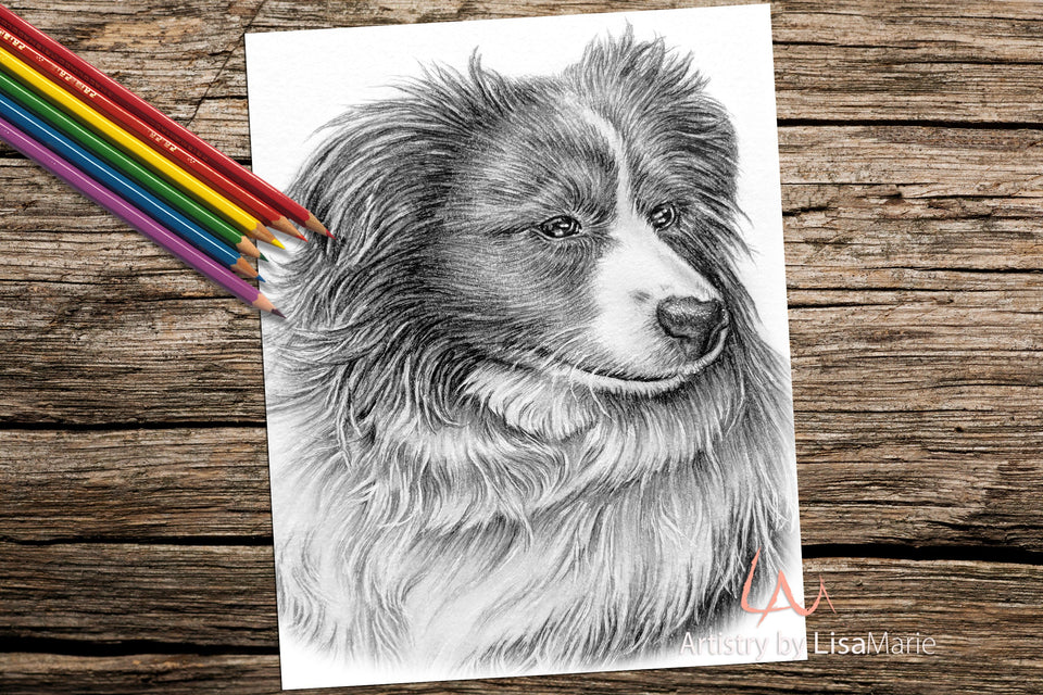 Printable Coloring Page: Collie Dog in Grayscale, , ArtistrybyLisaMarie