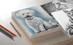 Printable Coloring Page: Bichon Frise In Grayscale, , ArtistrybyLisaMarie