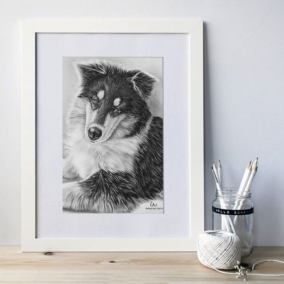 Fine Art Print: Black and White Dog Portrait, Collie, , ArtistrybyLisaMarie