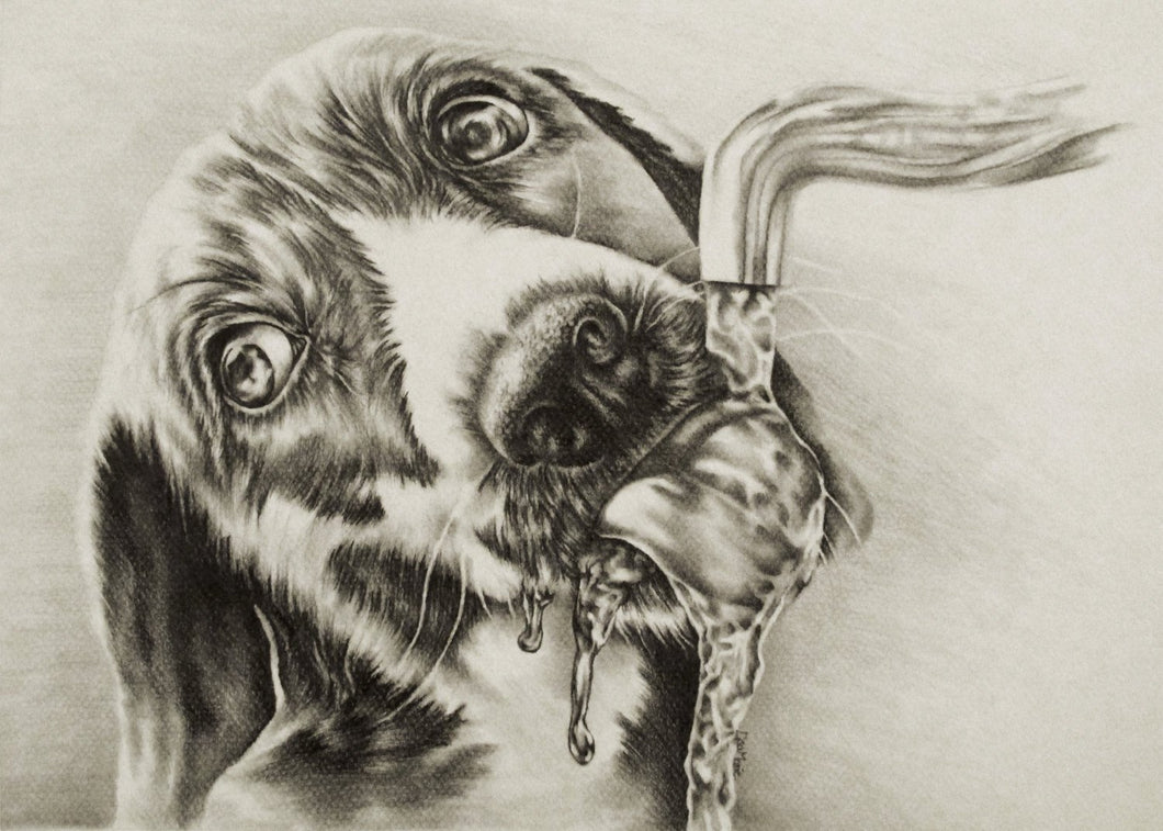 Fine Art Print: Drawing of Dog Drinking in Black and White, , ArtistrybyLisaMarie