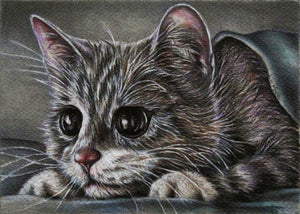 Fine Art Print: Drawing of Cute Grey Kitten, , ArtistrybyLisaMarie