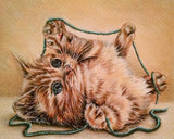 Fine Art Print: Drawing of Kitten With String, , ArtistrybyLisaMarie