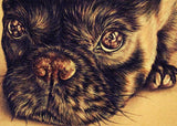 Fine Art Print Set: Drawings of Puppy Dogs, , ArtistrybyLisaMarie