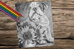 Printable Coloring Page: Bulldog And Sunflowers in Grayscale, , ArtistrybyLisaMarie