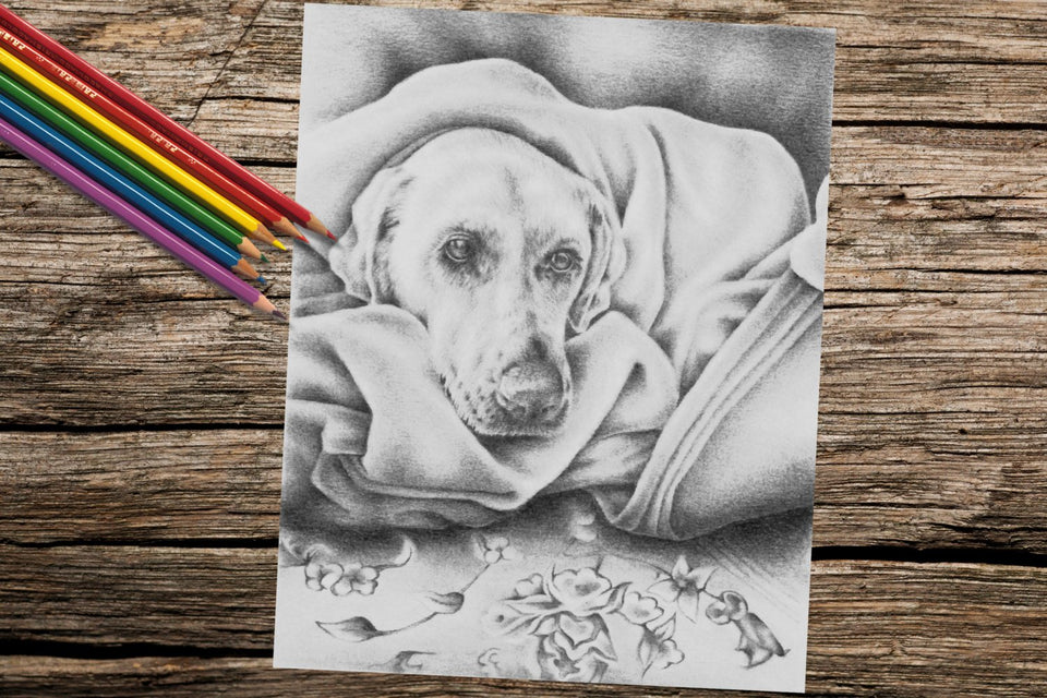 Printable Coloring Page: Dog in Blanket in Grayscale, , ArtistrybyLisaMarie