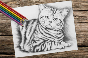 Printable Coloring Page: Tiger Cat in Grayscale, , ArtistrybyLisaMarie