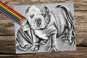 Adult Coloring Pages - Set of Coloring Sheets with Grayscale Dogs, Set #6, , ArtistrybyLisaMarie