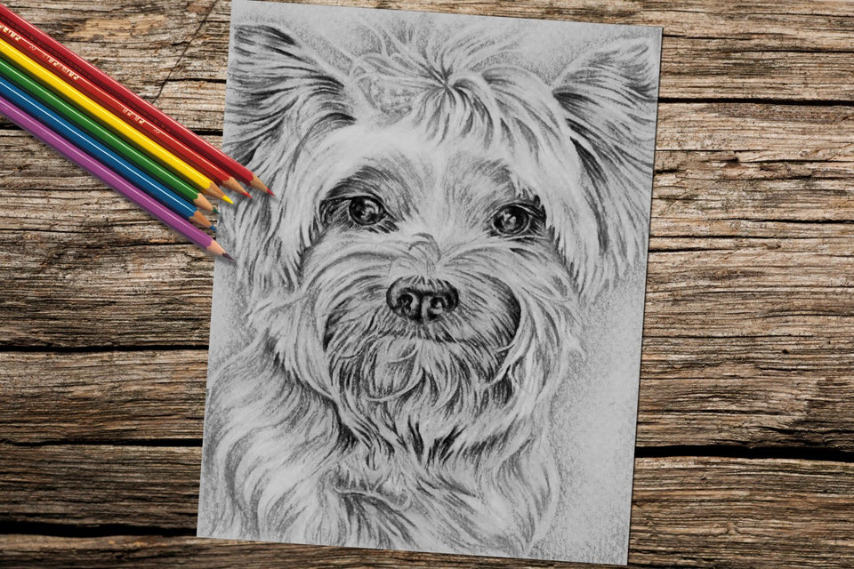 Adult Coloring Pages Set Of Coloring Sheets With Grayscale Dogs