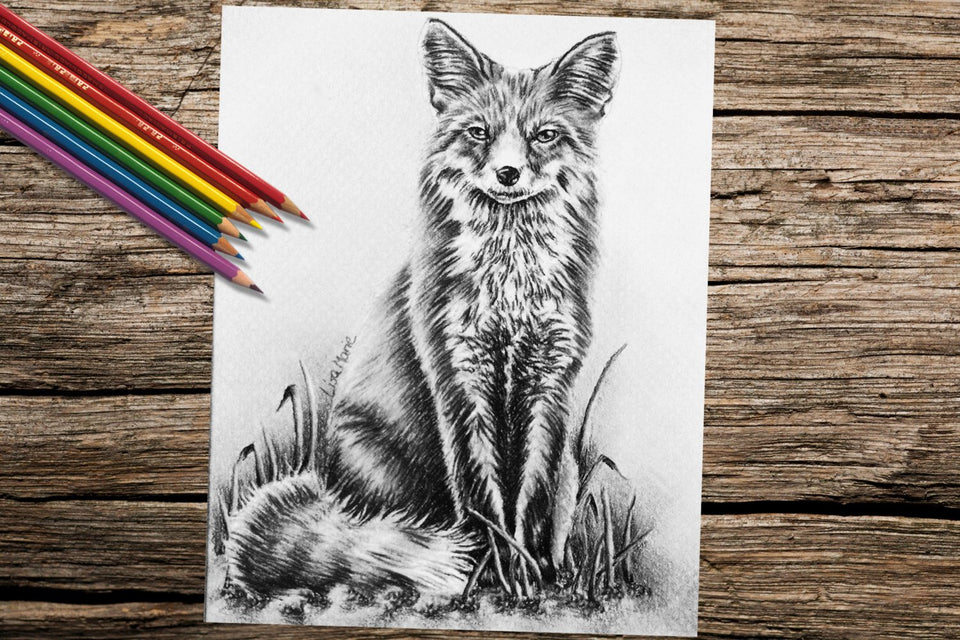 Adult Coloring Pages - Set of Coloring Sheets with Foxes, Set #16, , ArtistrybyLisaMarie