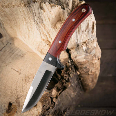 Fixed blade bushcraft knife with stainless steel blade