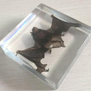 Real Resin Vampire Bat