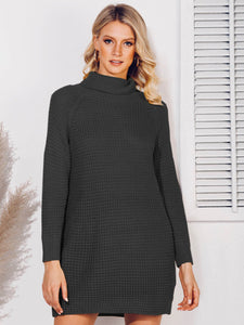 Solid Turtleneck Shift Raglan Sleeve Sweater
