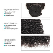 10A Jerry Curly Virgin Hair 3 Bundles With Frontal 100% Human Hair - ashimaryhair