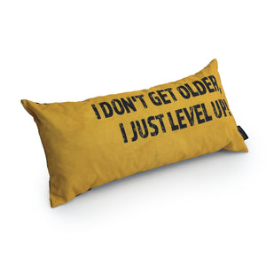 Gaming Cushion - I Don't Get Older, I Just Level Up!