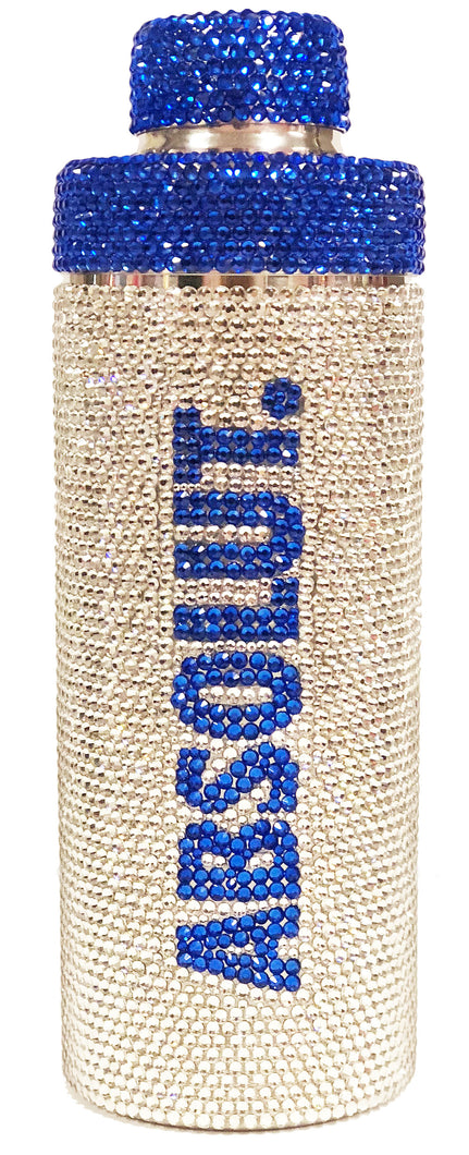 NEW! 17 ounce Stainless Steel Rhinestone Cocktail Shaker