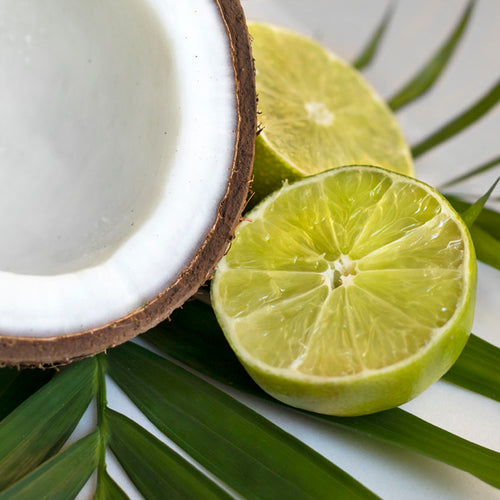 Coconut Lime Verbena Citrus Fragrant Soy Candle