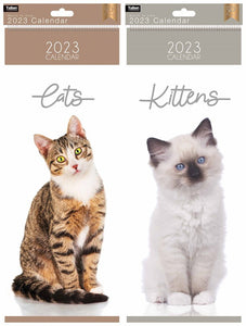 Super-Slim Calendar: Kittens & Cats