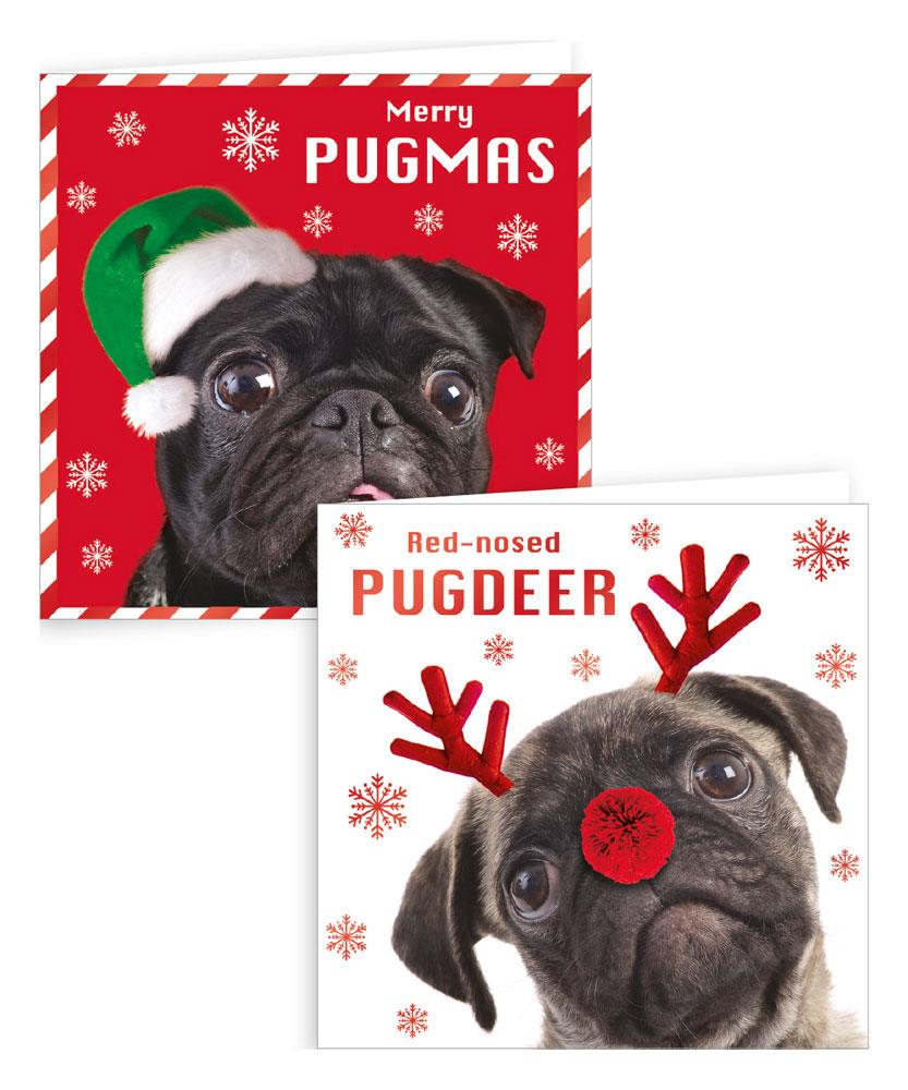 10 Square Photographic Pug Boxed Cards
