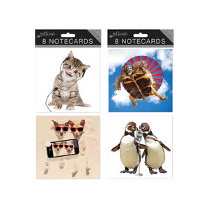 8 Square Notecards: Crazy Animals
