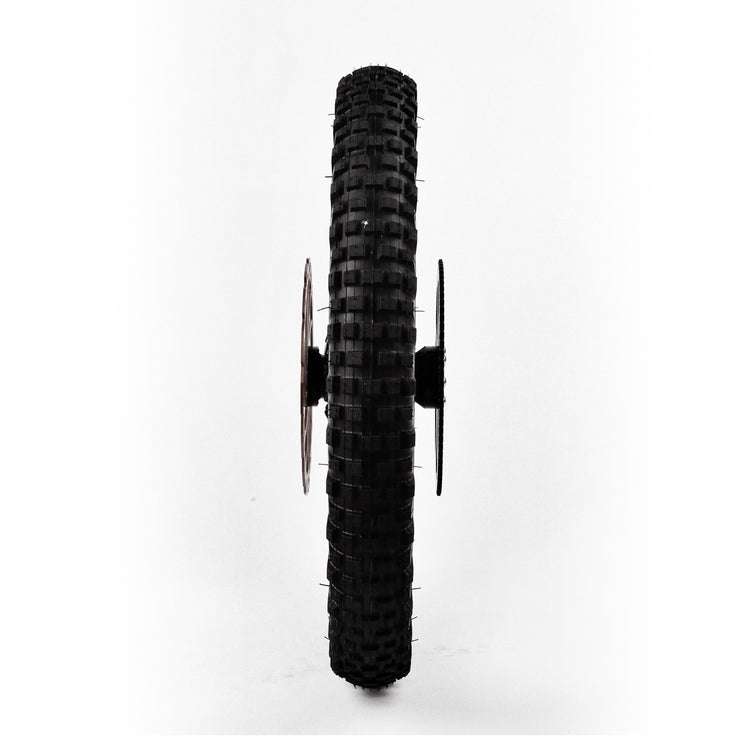 "20"" Freerider Rear Wheel Assembly"