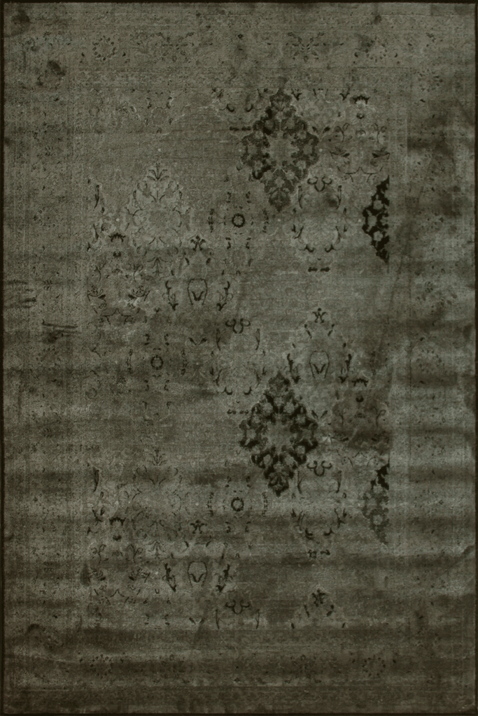 Raymond Traditional Distressed Floral Rug