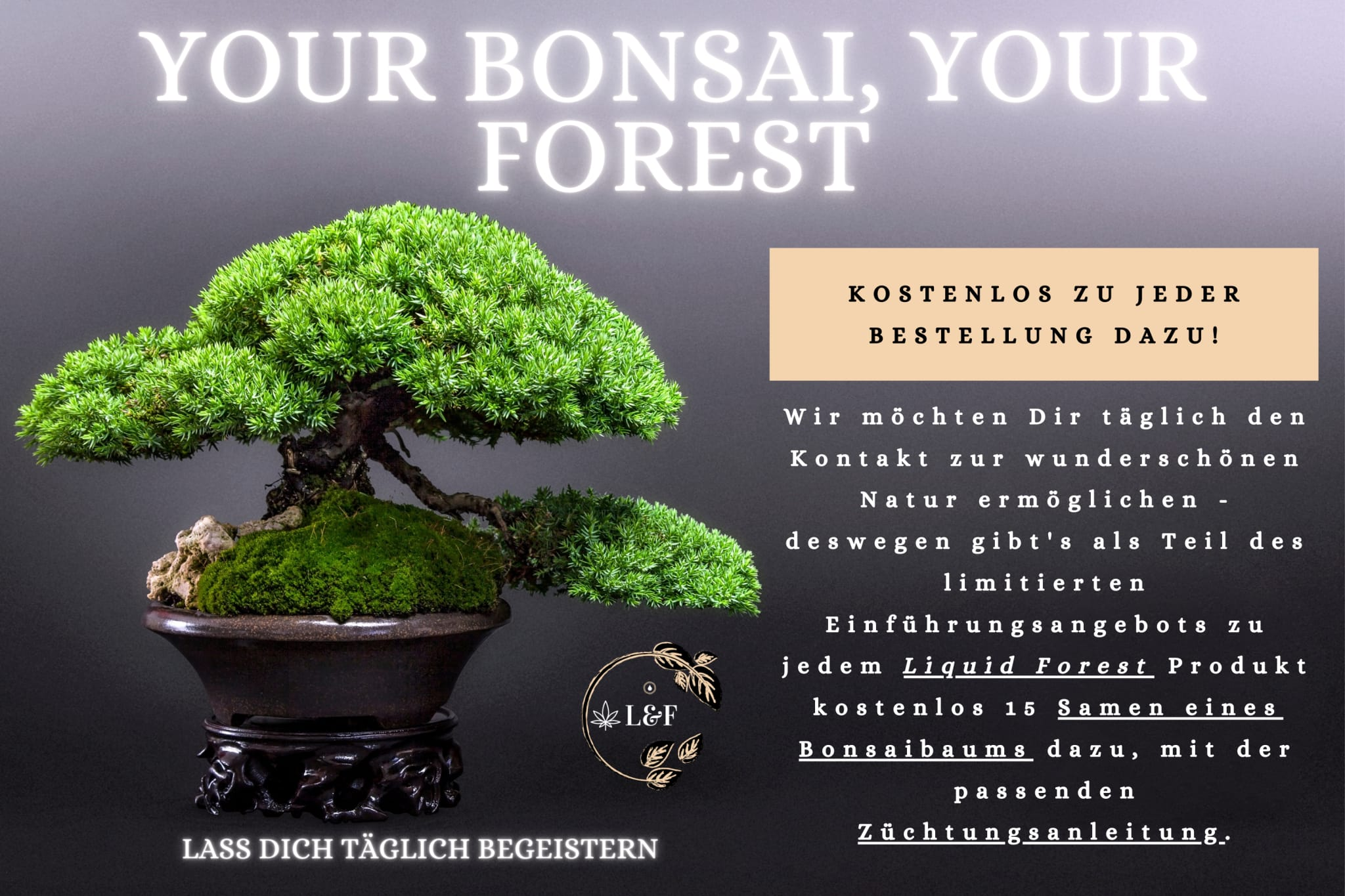 Liquid Forest Vollspektrum CBD Hanf Öl 10% - 10ml
