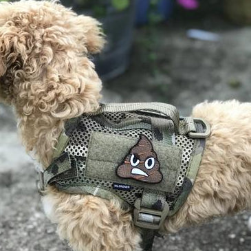 Mini Dog and Crossbones Patch - Multicam - Morale Patch