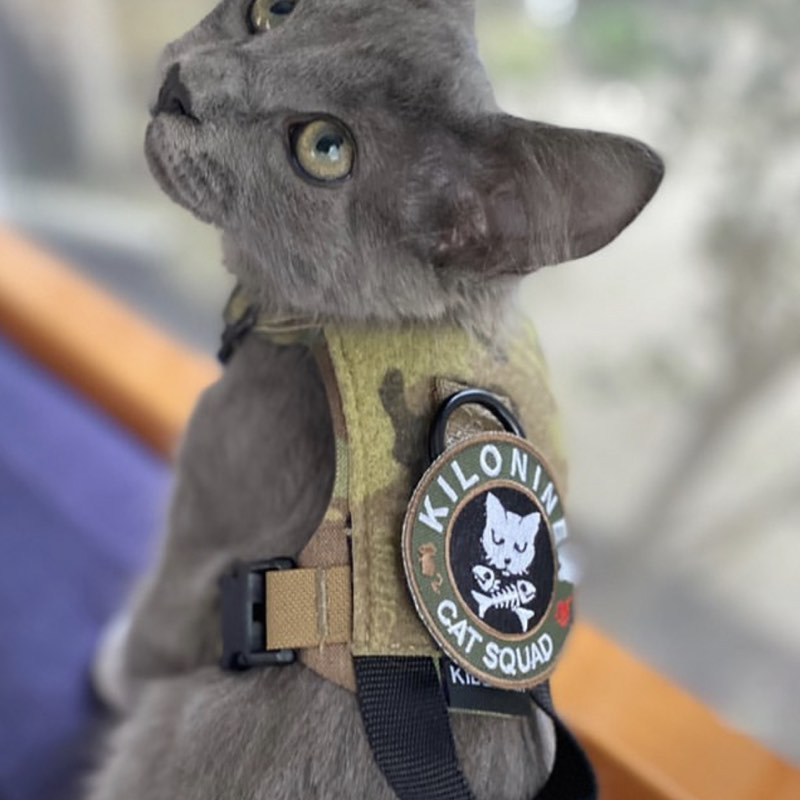 Cat Squad Patch Jungle - Morale Patch