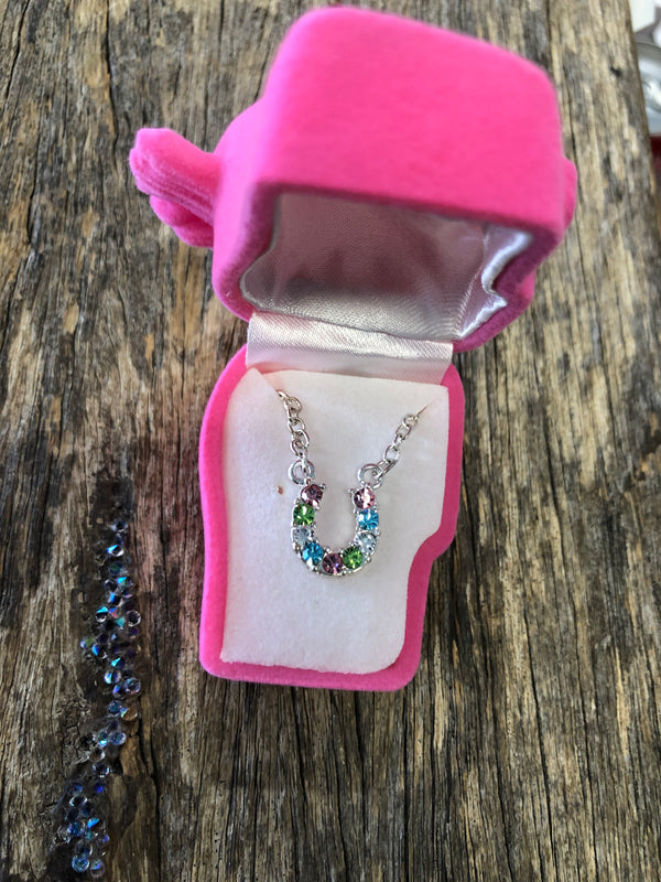 Multi-Colour Rhinestone Horse Shoe Necklace with Horsehead Gift Box LAST ONE