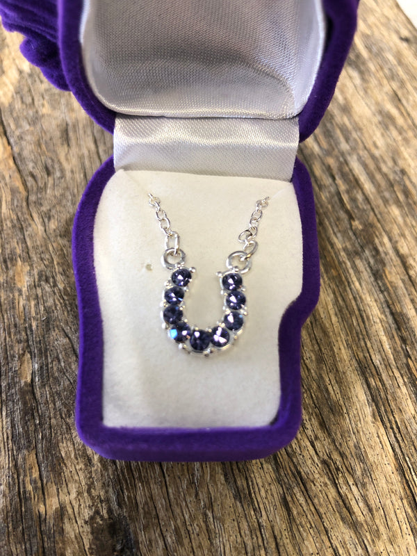 Purple Rhinestone Horse Shoe Necklace with Horsehead Gift Box LAST ONES