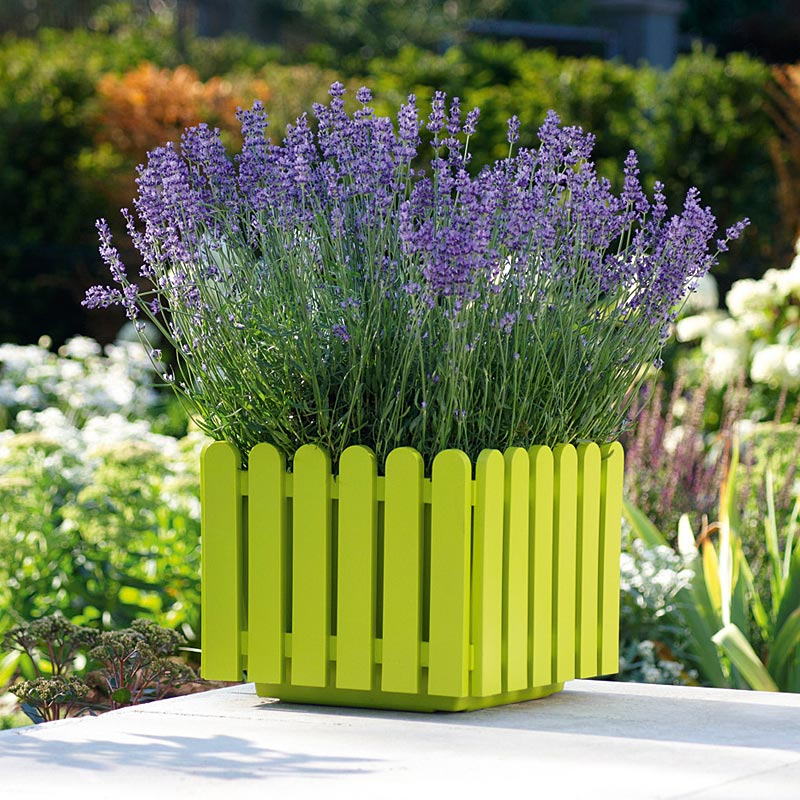 Landhaus Planter Rectangular