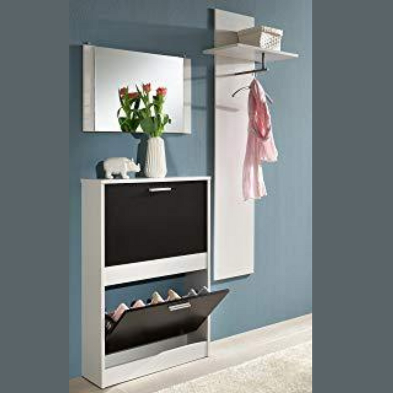 Shoe Cabinet and Garde-robe