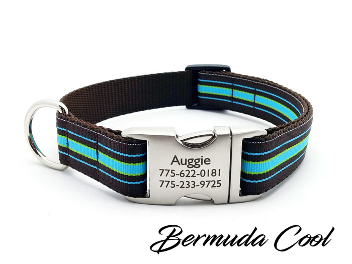 Bermuda Cool Stripe Dog Collar with Laser Engraved Personalized Buckle