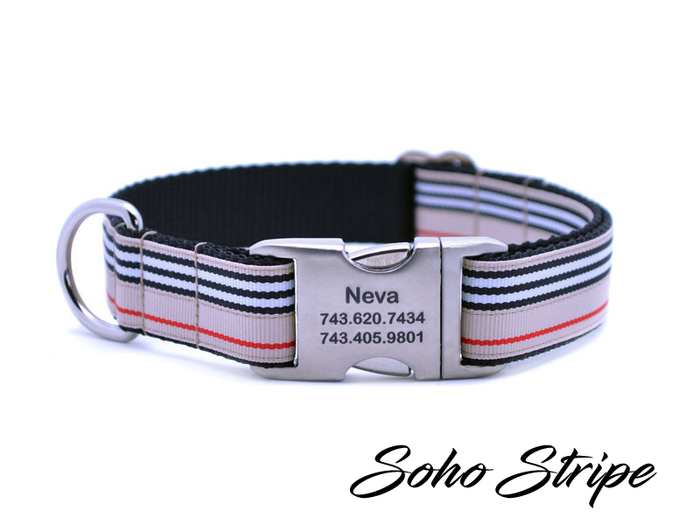 Soho Stripe Dog Collar with Laser Engraved Personalized Buckle - Flying Dog Collars