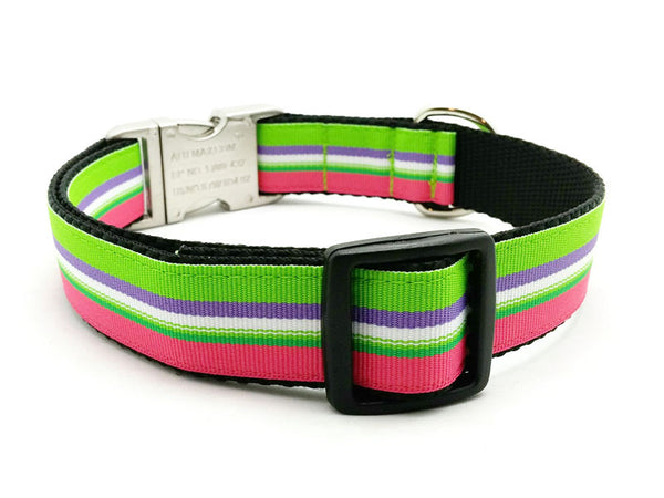 Beach Blanket Stripe Dog Collar with Laser Engraved Personalized Buckle - Flying Dog Collars