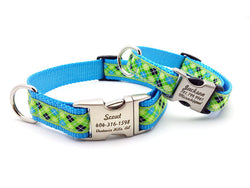 Lime Green & Blue Argyle Dog Collar with Personalized Buckle - Flying Dog Collars