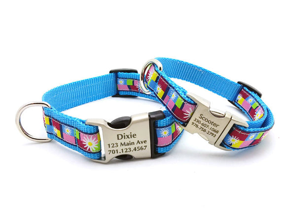 Daisy Color Blocks Dog Collar with Personalized Buckle - Blue - Flying Dog Collars