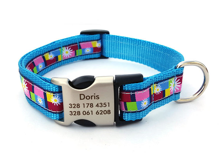 Daisy Color Blocks Dog Collar with Personalized Buckle - Blue