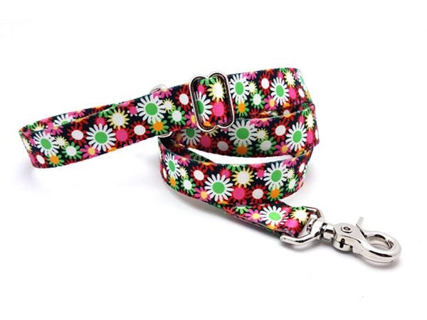 Daisy Fields Polyester Adjustable Handle Leash