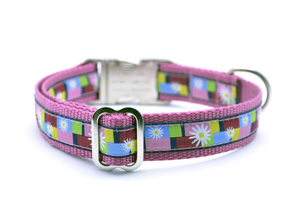 Daisy Color Blocks Dog Collar with Personalized Buckle - Pink - Flying Dog Collars