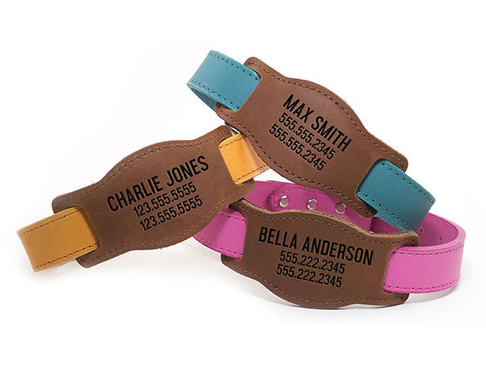 Laser Etched Personalized Leather Slide and Collar Set