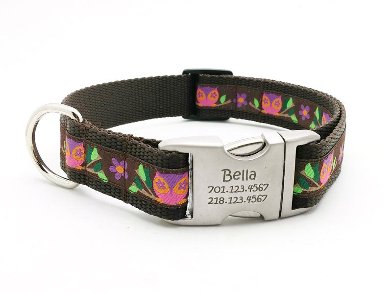 Euro Owls Dog Collar with Personalized Buckle – Flying Dog Collars
