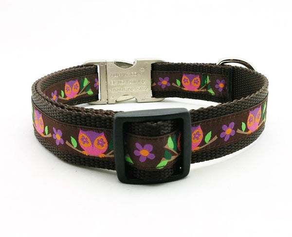Euro Owls Dog Collar with Personalized Buckle - Flying Dog Collars